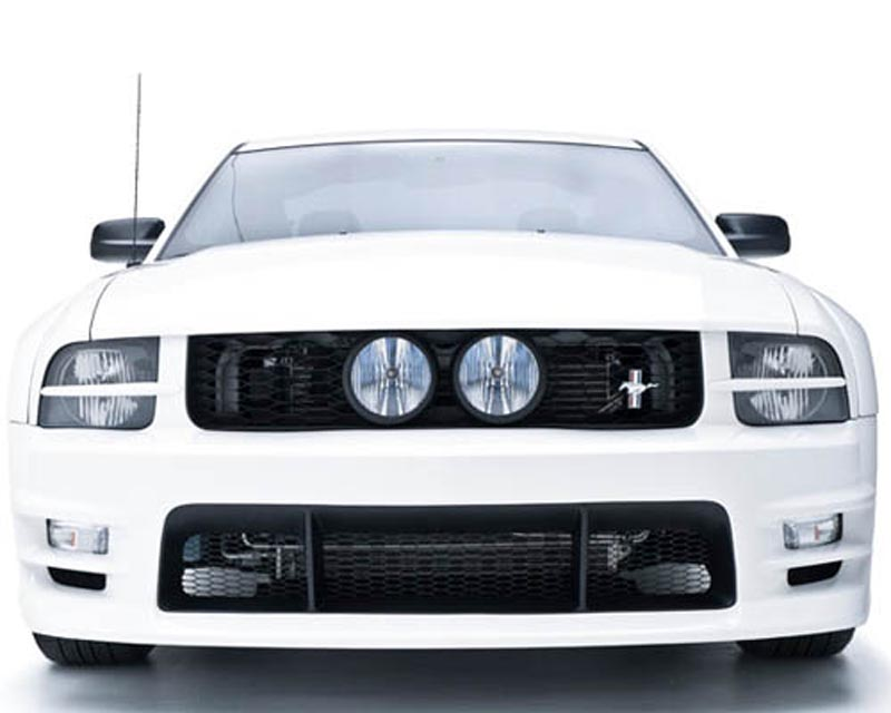 3dCarbon GT E-Style Grille Ford Mustang GT 05-09