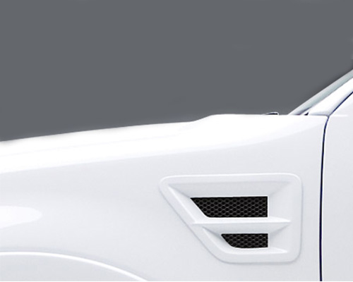 3dCarbon Front Fender Vent W/Grille Pair Type I With Horizontal Cross Bar Ford F-150 04-08