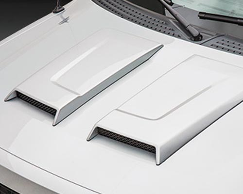 3dCarbon Dual Hood Scoop Ford F-150 09-14