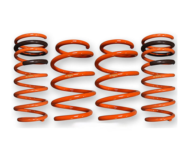 ARK GT-F Lowering Springs BMW M5 F10 12-15