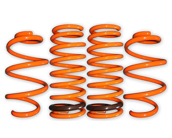 ARK GT-F Lowering Springs Hyundai Sonata ALL 11-13