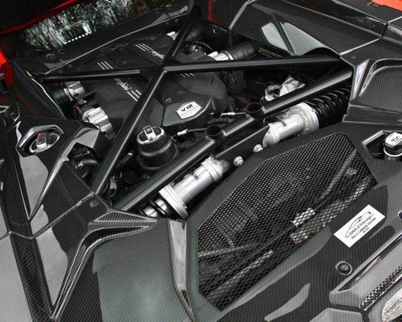 Oakley Design Carbon Fiber Engine Bay Cover Set Lamborghini Aventador 11+