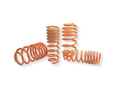 Neuspeed Race Springs Audi A4 Quattro 1.8T and V6 96-00 - 55.02.25