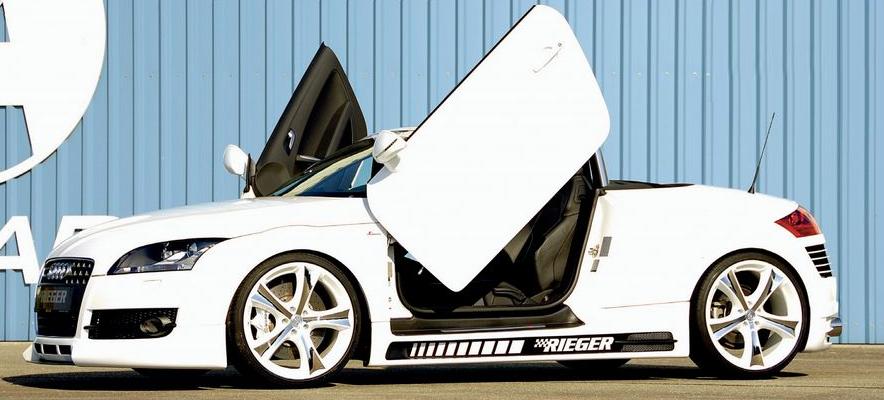 Rieger Carbon Look Left Side Skirt w/ Ducts & Recess Audi TT 8J 07-12 - R 99045