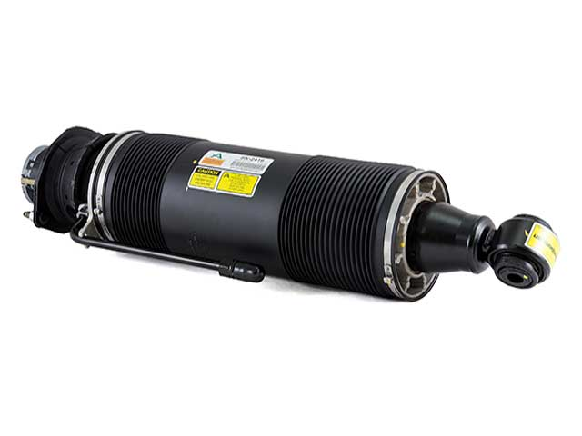 Arnott Industries Mercedes-Benz Shock Absorber